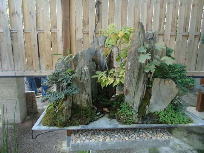 Visite du jardin Jean Pierre Cardinal Dsc09417