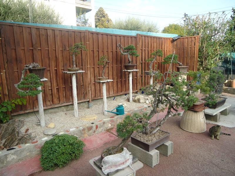Visite du jardin Jean Pierre Cardinal Dsc09711