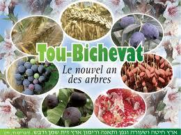 Tou Bichvat (Nouvel an des arbres) Images34