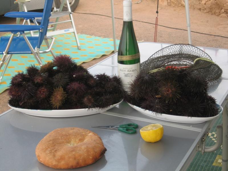 peche aux coquillage Maroc_16
