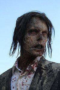 The Walking Dead The_wa11
