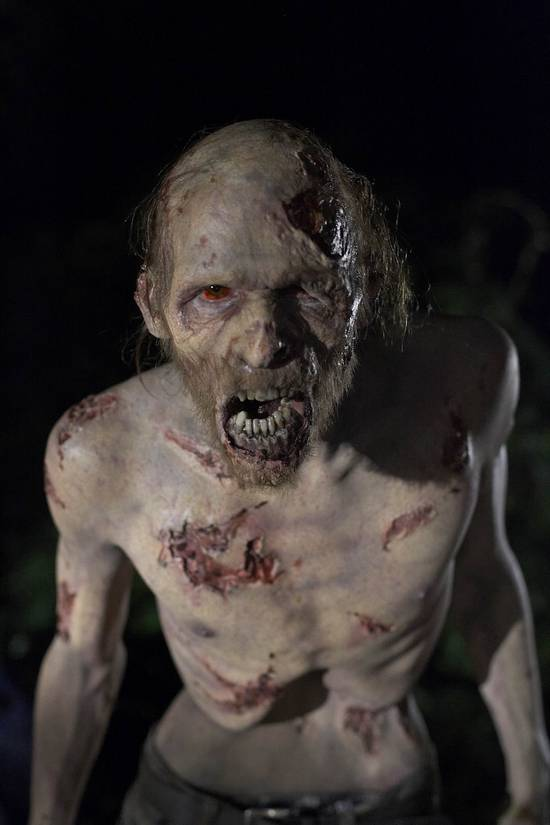 The Walking Dead Walkin10