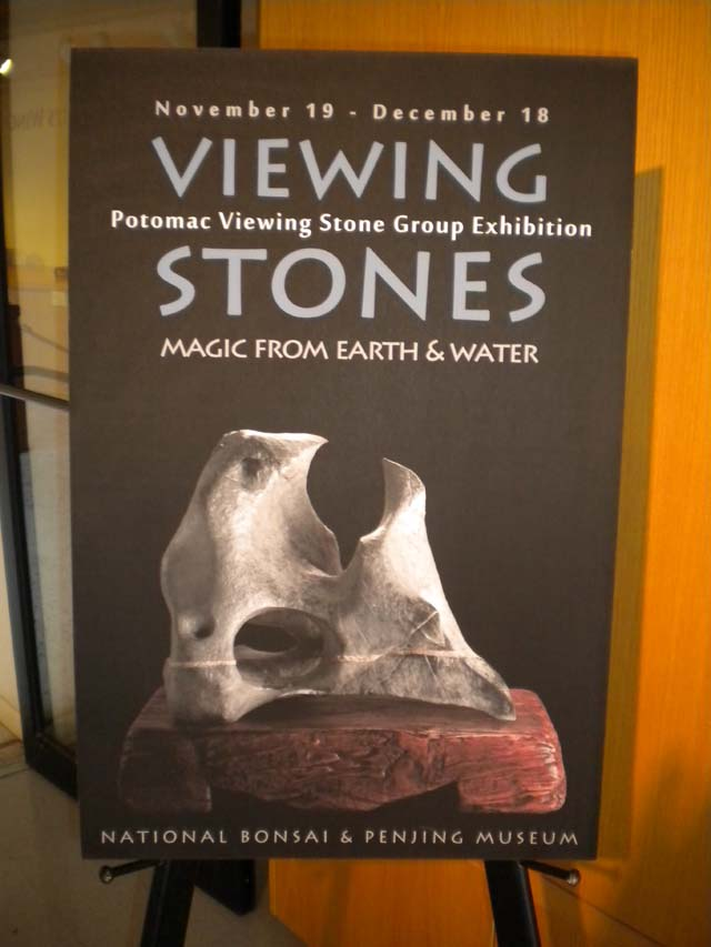 Potomac Viewing Stone Group exhibit - Magic from Earth & Water (NBPM, 11/19 - 12/18) Dscn0510