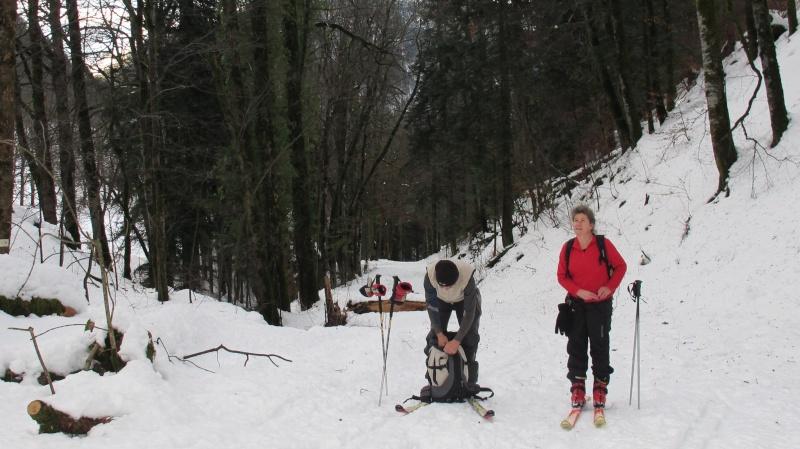 02/01/2012 - La Ruchère Img_2518
