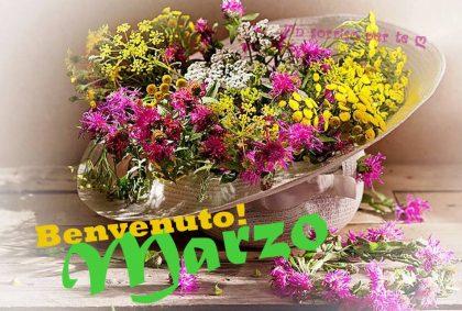 I Saluti di Marzo  2021 Marzo-10