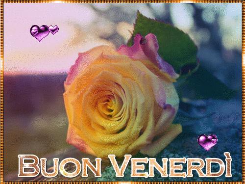 I Saluti di Dicembre Venerr11