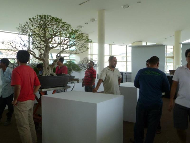 The Unique of Bonsai Show 2012(15 Mar - 15Apr, Putrajaya) - Malaysia Bs010