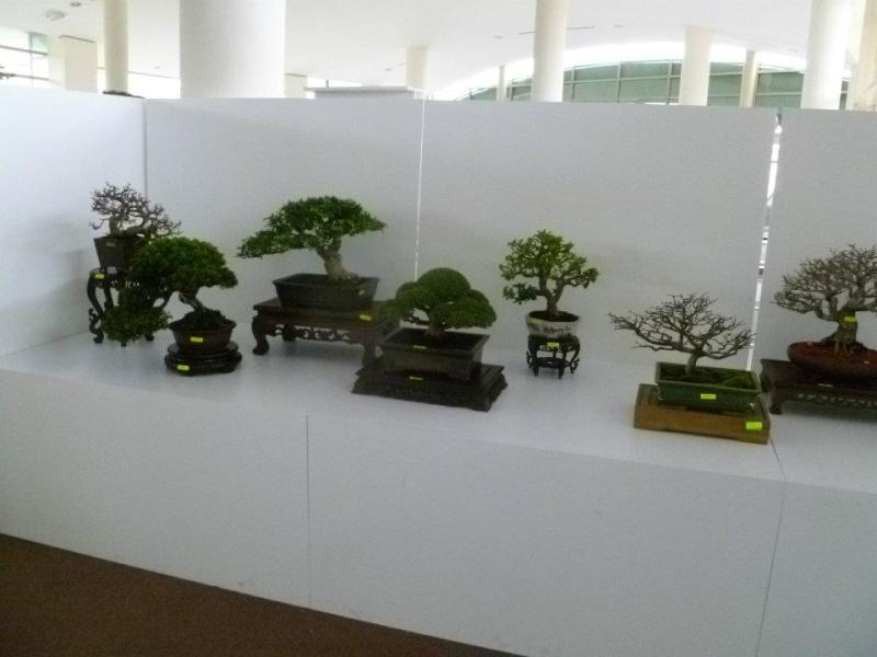 The Unique of Bonsai Show 2012(15 Mar - 15Apr, Putrajaya) - Malaysia Bs210