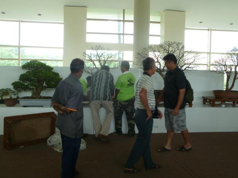 The Unique of Bonsai Show 2012(15 Mar - 15Apr, Putrajaya) - Malaysia Bs310