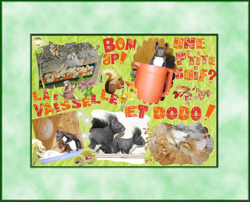 ♥♥♥ Mes petits n'amours de chiens de prairie, avec leurs demi-frères... ♥♥♥ - Page 6 Copie_12