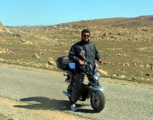 moto type DAX Artima13