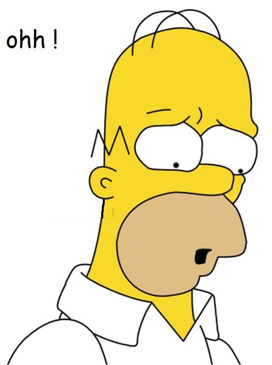 Duke se fait tout petit Homer10