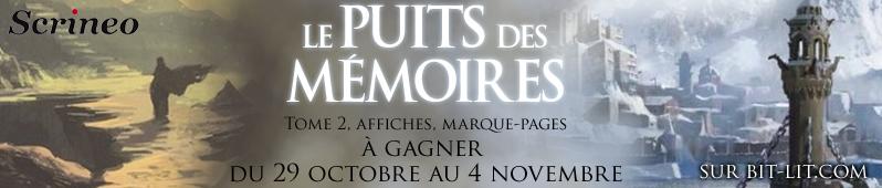Concours Le Puits des Mémoires Puits10