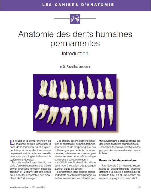 anatomie - Anatomie des dents humaines permanentes : Introduction Intro10