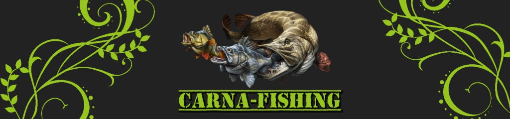 Carna-Fishing