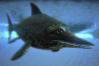 Oceanic Creatures Ichthy10