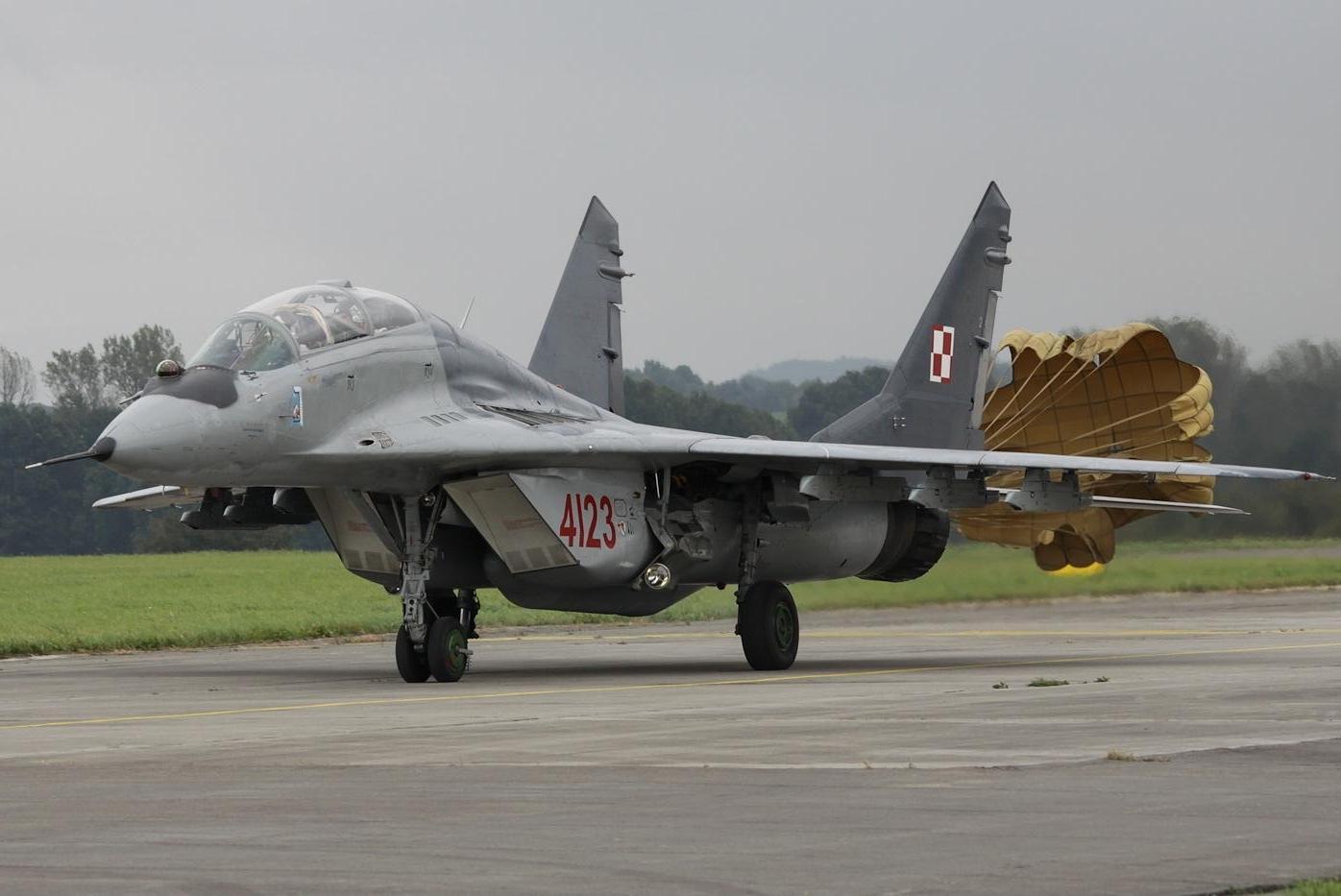 Armée Polonaise Polish10