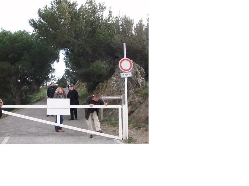 Lubéron Plateau d'Albion Ventoux le 11/12/2011 - Page 2 Sans_t10
