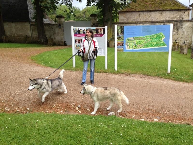 Angie et Baltik en excursion dans le Berry  Img_0014