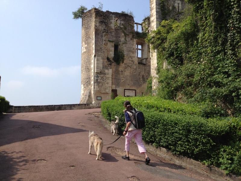 Angie et Baltik en excursion dans le Berry  Img_0112