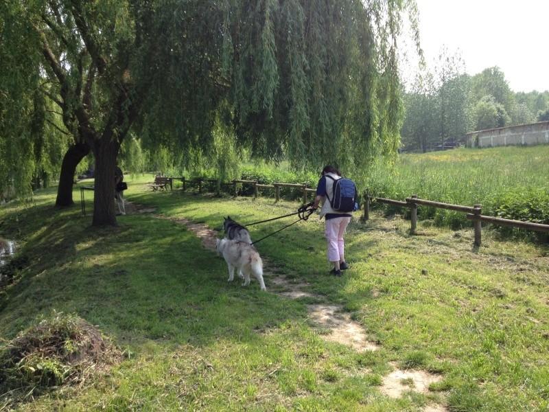 Angie et Baltik en excursion dans le Berry  Img_0114