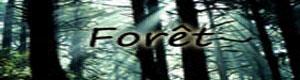 Zone RP Forat10