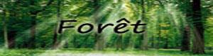 Nürnen Forat_11