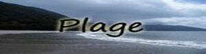 Nürnen Plage10