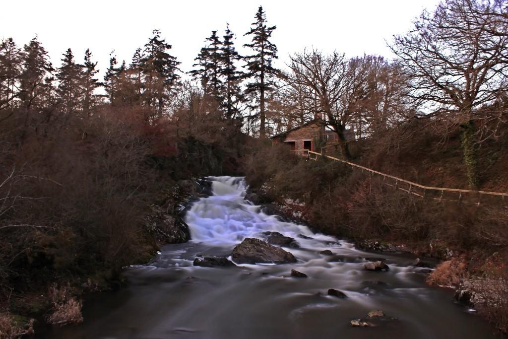 Et au mileu coule une riviere Img_0913
