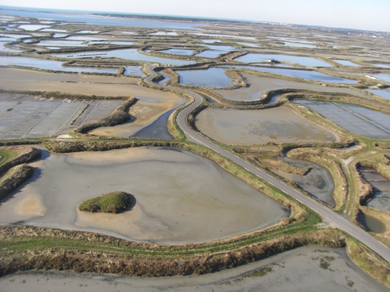 photos aériennes des marais salants de Guérande Photos14