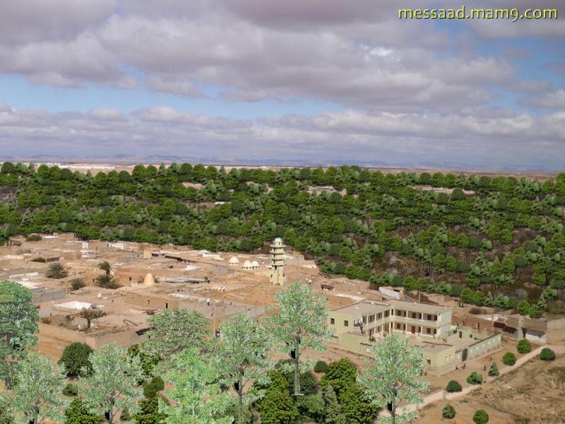 لن تتوقع ما سوف تشاهده ... صورة نادرة من مدينة مسعد 0213
