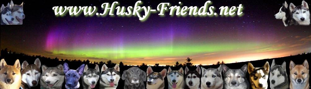 Husky-Friends Das Forum Für Liebhaber Nordischerrassen ! Unbena18