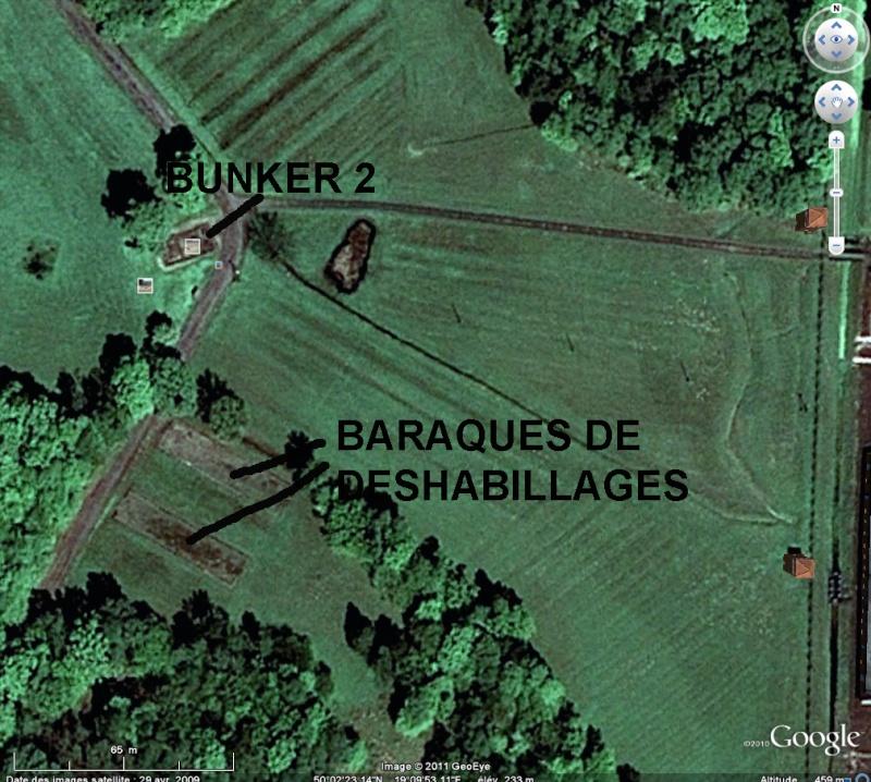 Birkenau : les lieux de gazages Bunker10