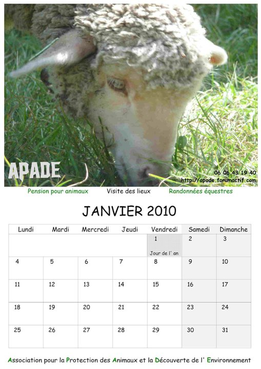 Calendriers 2012 33671_10