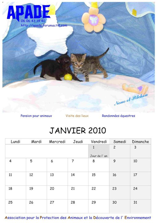 Calendriers 2012 36164_10