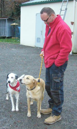 Maria, Zoé et Laya sauvée, bientôt 1 an ..en visite P1110111