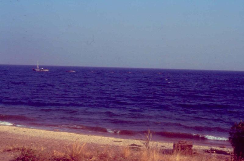 Les diapositives de Jean Pierre en plongée au Tanganyika. 005210