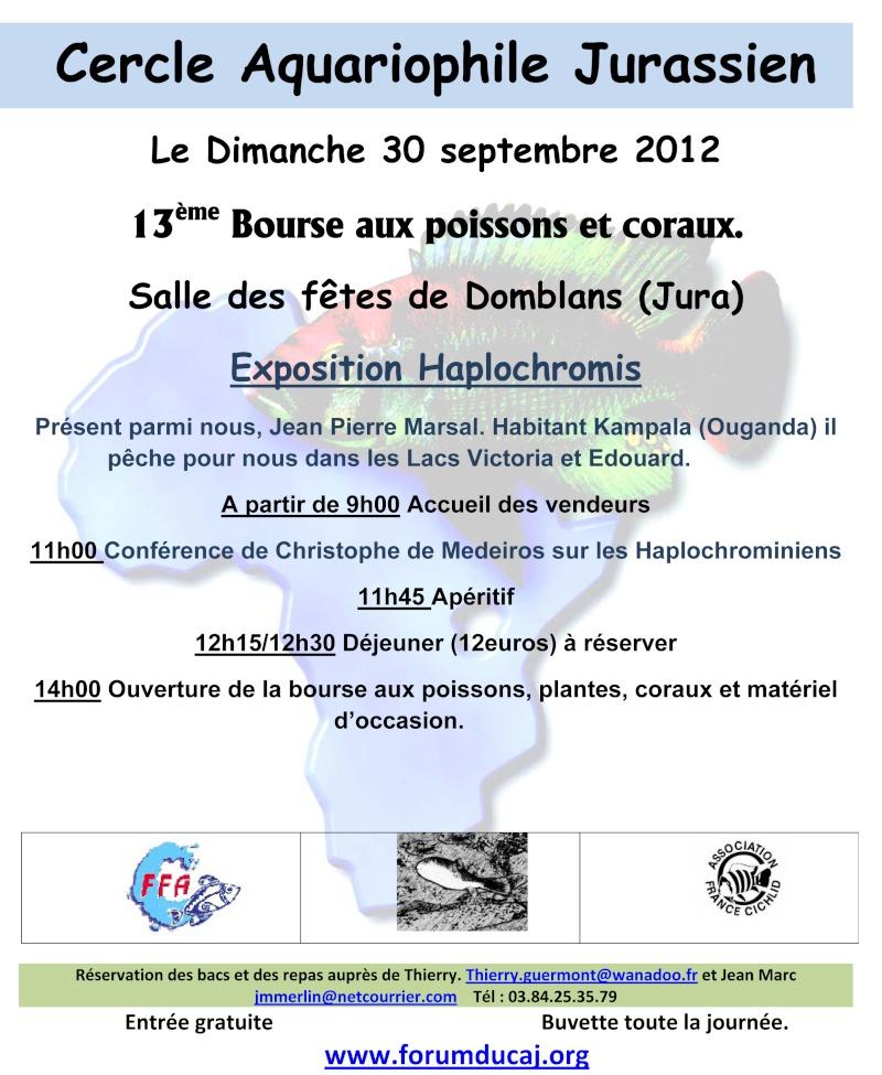 concours Affiche pour la bourse du 30 septembre 2012 Cercle13
