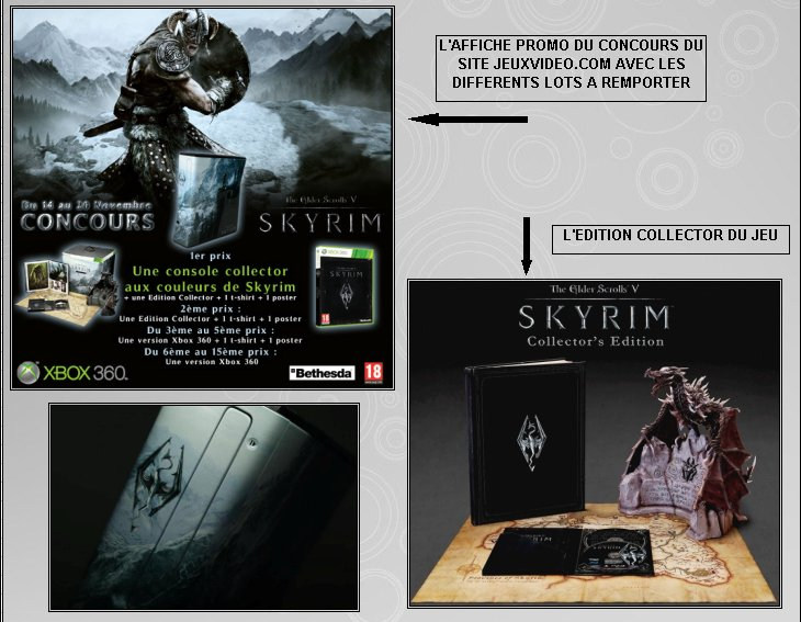 XBOX 360 : Edition SKYRIM Skyrim13