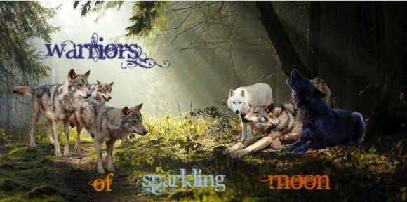 Warriors of sparkling Moon Wosm_b14