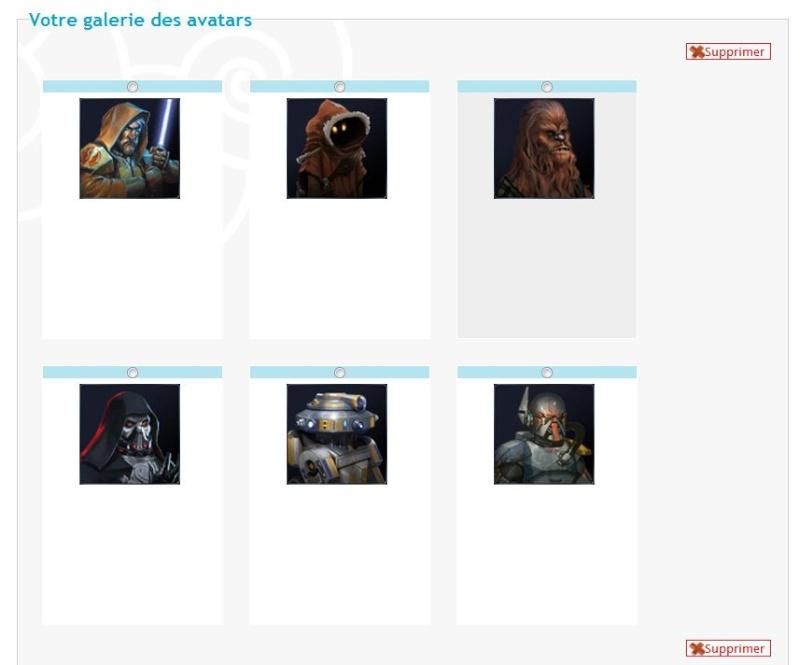 Problème lors de l'ajout d'avatar dans la galerie d'avatars personnels Captur10