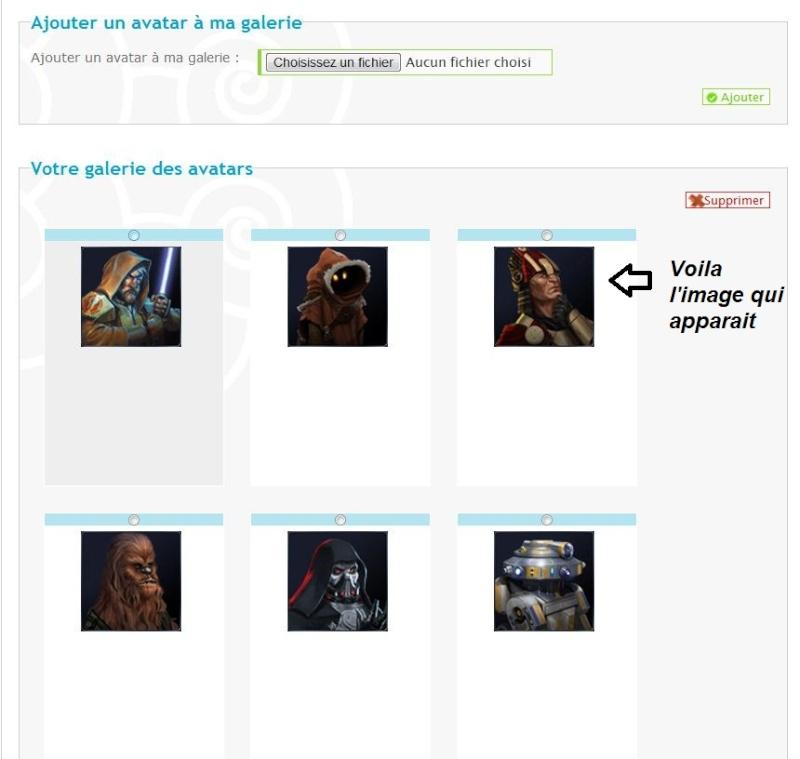 Problème lors de l'ajout d'avatar dans la galerie d'avatars personnels Captur14
