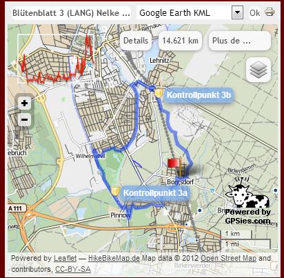Borgsdorfer Nelke (prox Berlin, D), 100km : 24 novembre 2012 Bn_310