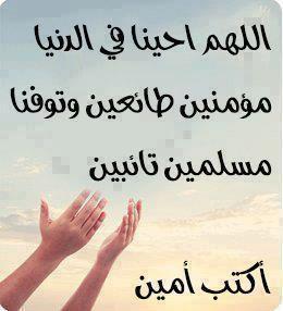 Marque ton passage au forum par une aya ou un hadith 4410