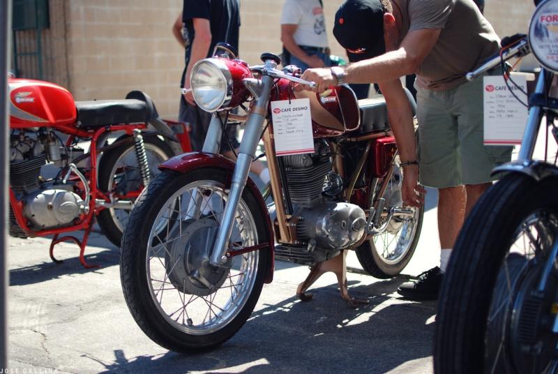 Ici on balance les Monos Ducati - Page 3 Tumbl164