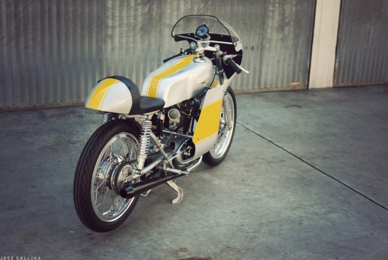Ici on balance les Monos Ducati - Page 3 Tumbl169