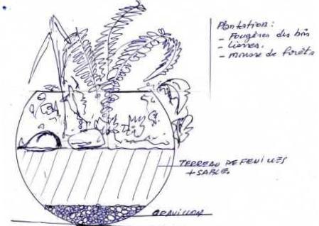 Terrarium à mur végétal 1013
