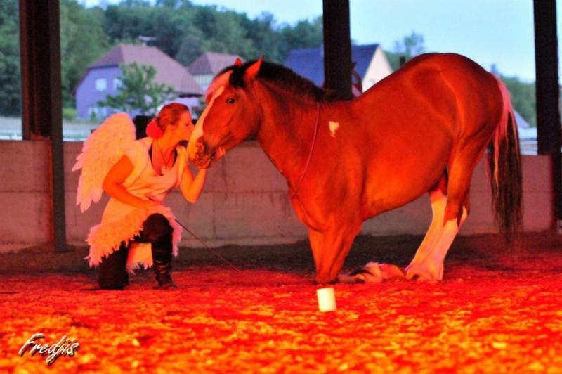 Thème juillet 2012 : Quand cheval rime avec poésie.... 54749610