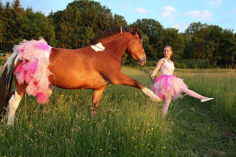 Thème juillet 2012 : Quand cheval rime avec poésie.... 55685010