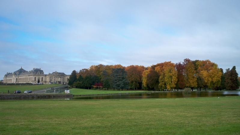 Le domaine de Chantilly - Page 12 100_4219